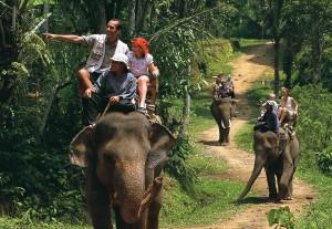 bali-elephant-safari-03